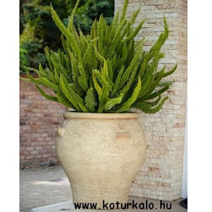 Amphora fagyálló kaspó